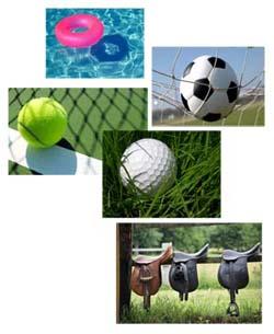 sezione sport comp